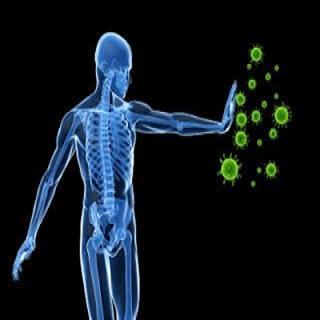 Nấm linh chi hỗ trợ điều trị bệnh ung thư